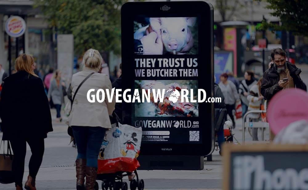 web design and development of wordpress based website - GO VEGAN WORLD